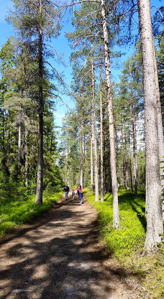 En tur i trollskogen.
